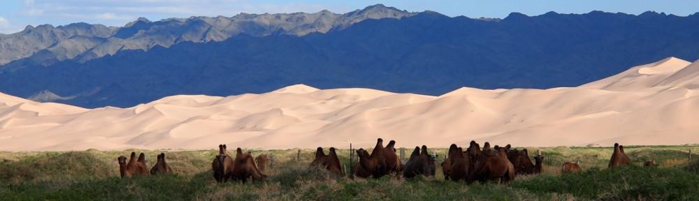 Khongor Sanddüne Mongolei
