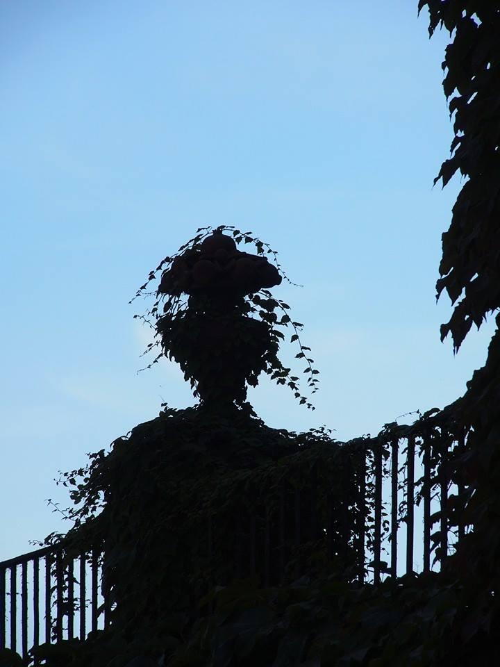 Labyrinth Garten