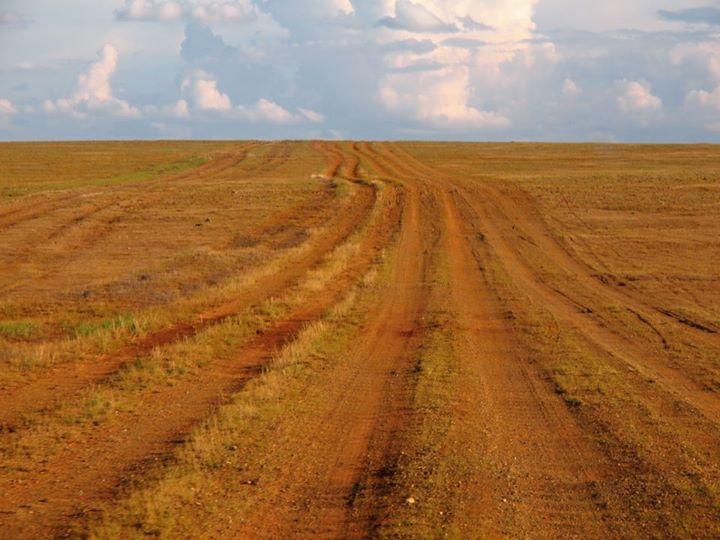 Steppenwüste Gobi