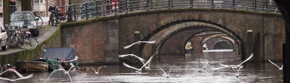 Amsterdam Brücke2
