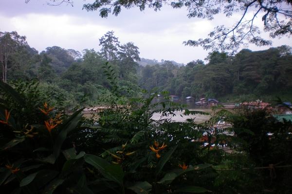 Tamana Negara