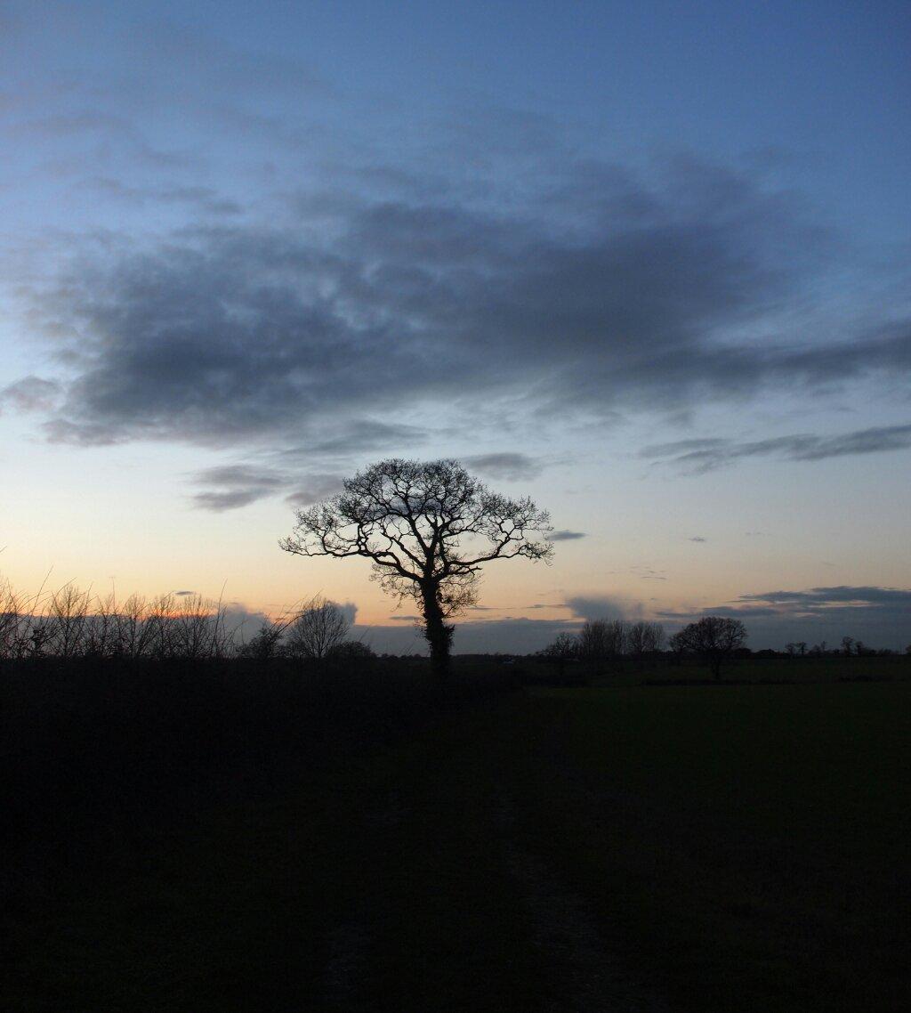 Sunset UK