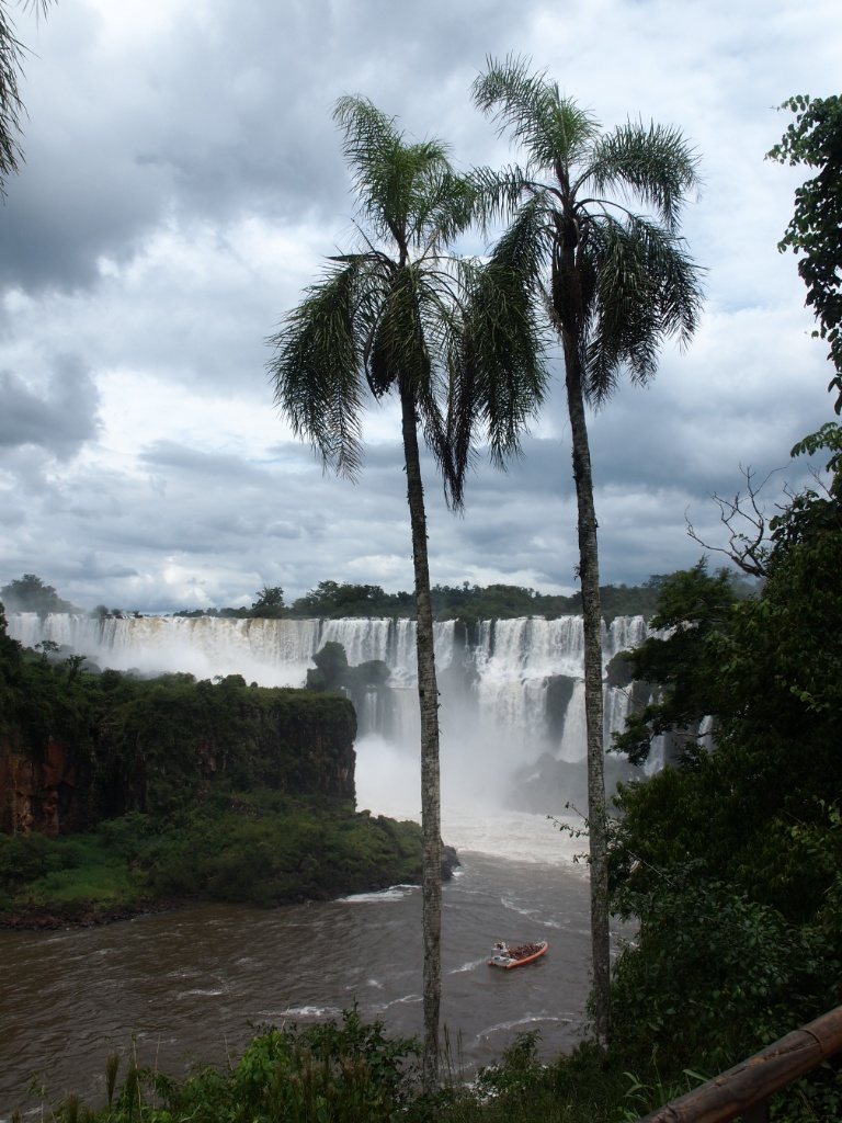 palmen iguazu