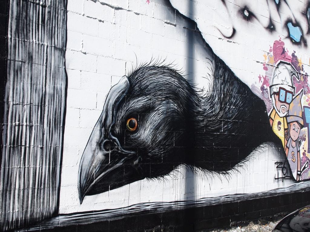 graffity christchurch