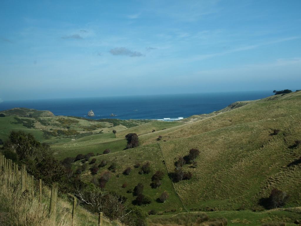 Halbinsel otago