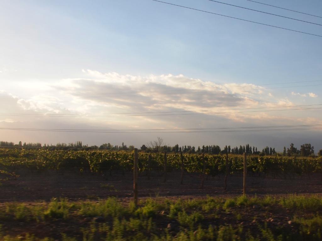 mendoza landschaft
