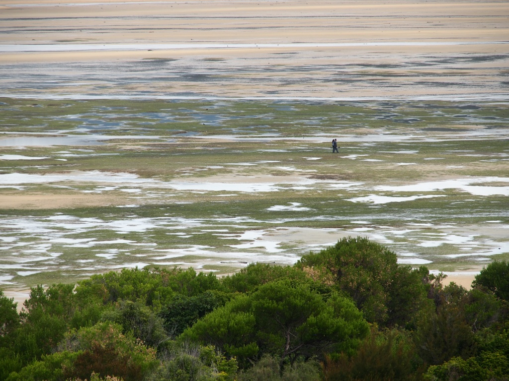 Ebbe sand bay