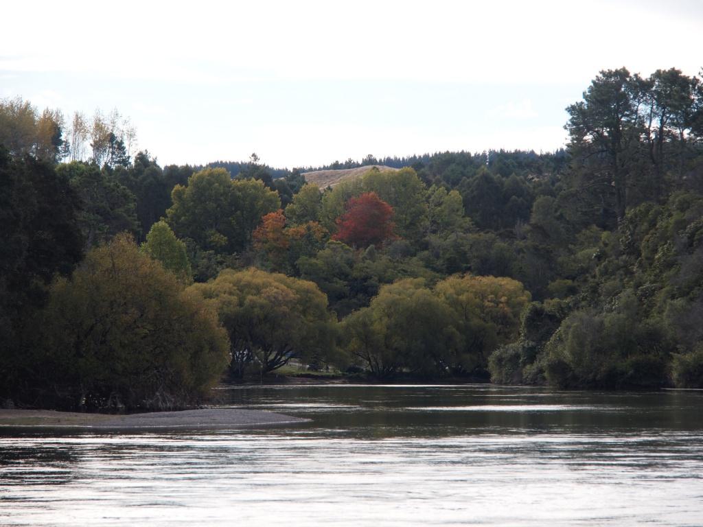 Fluss taupo