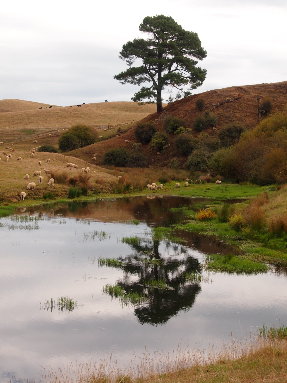 Landschaft hobbiton