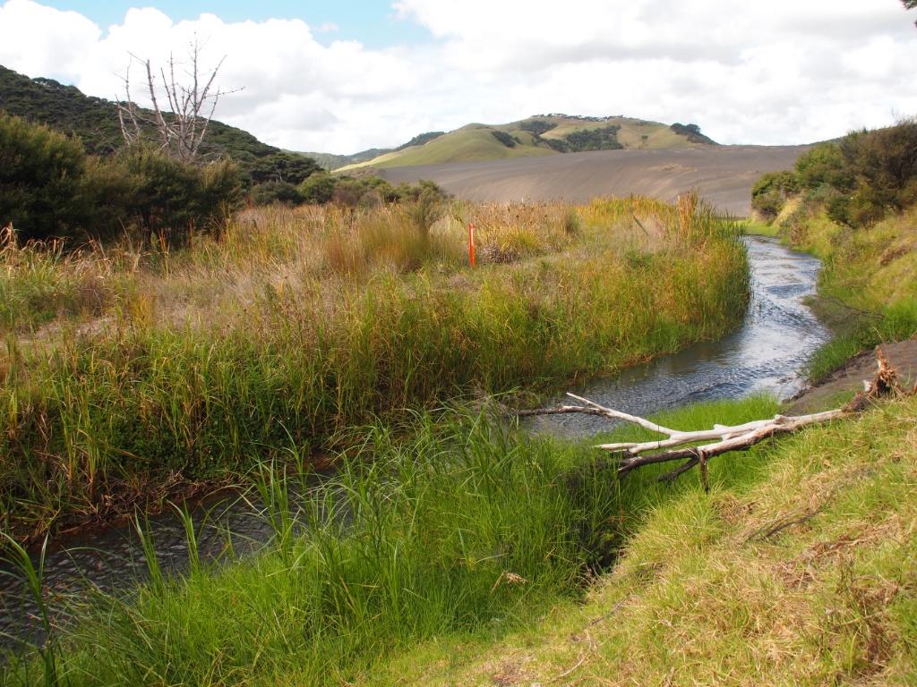 Landschaft neuseeland weltreise