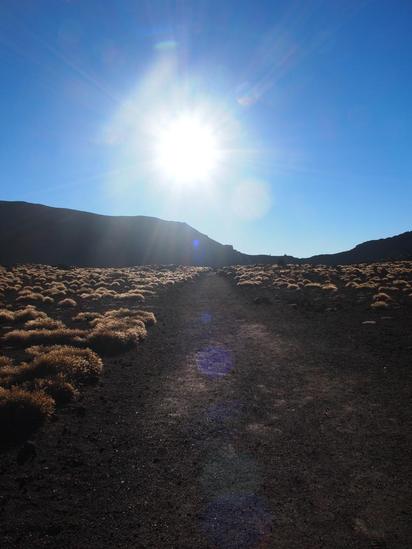 Landschaft tongariro