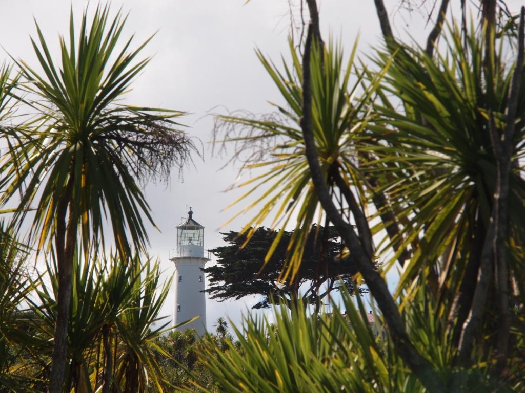 Leuchtturm tiritiri