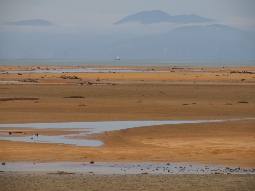 Sandy bay neuseeland