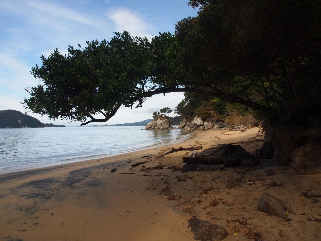 Strand abel tasman