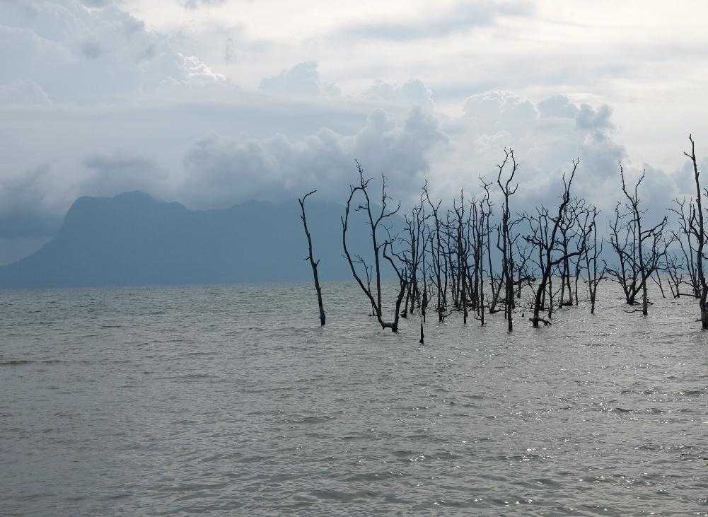 Nationalpark sarawak