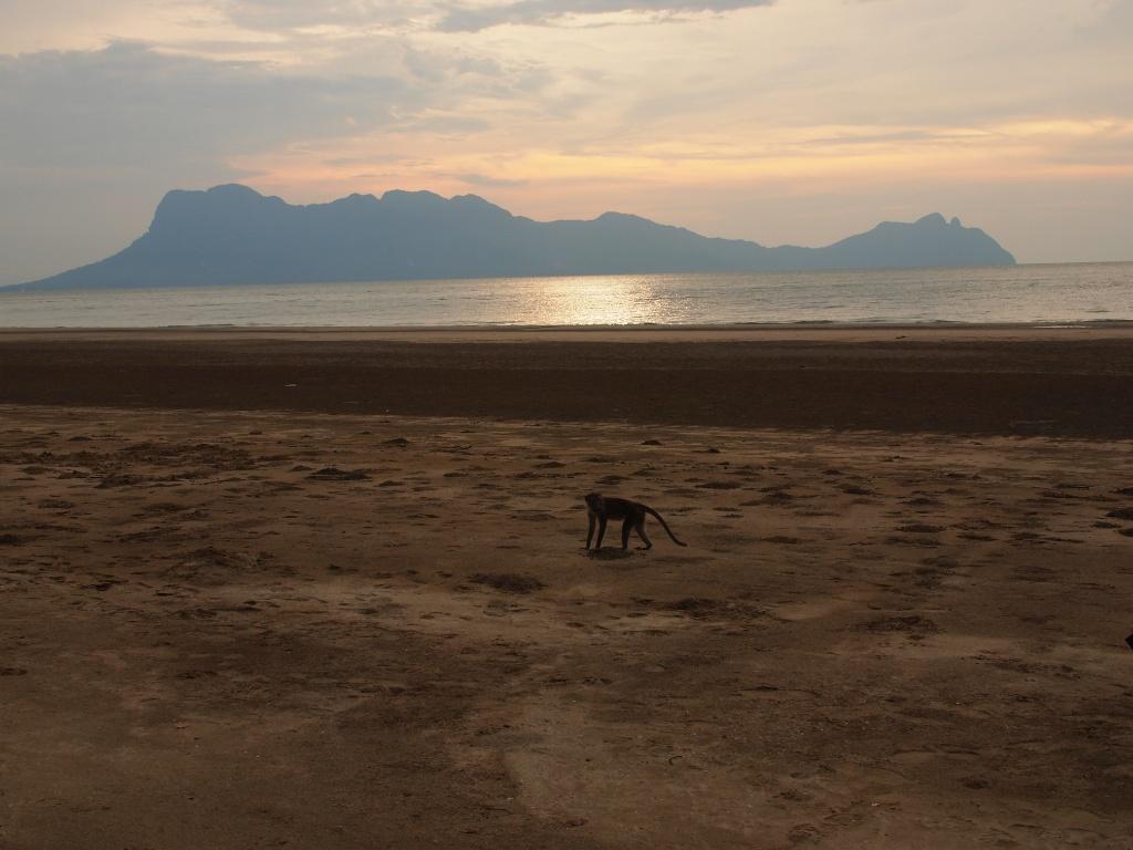 Strand südchinesisches meer