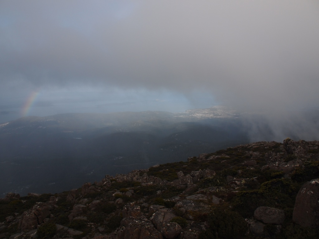 regen-mt-wellington