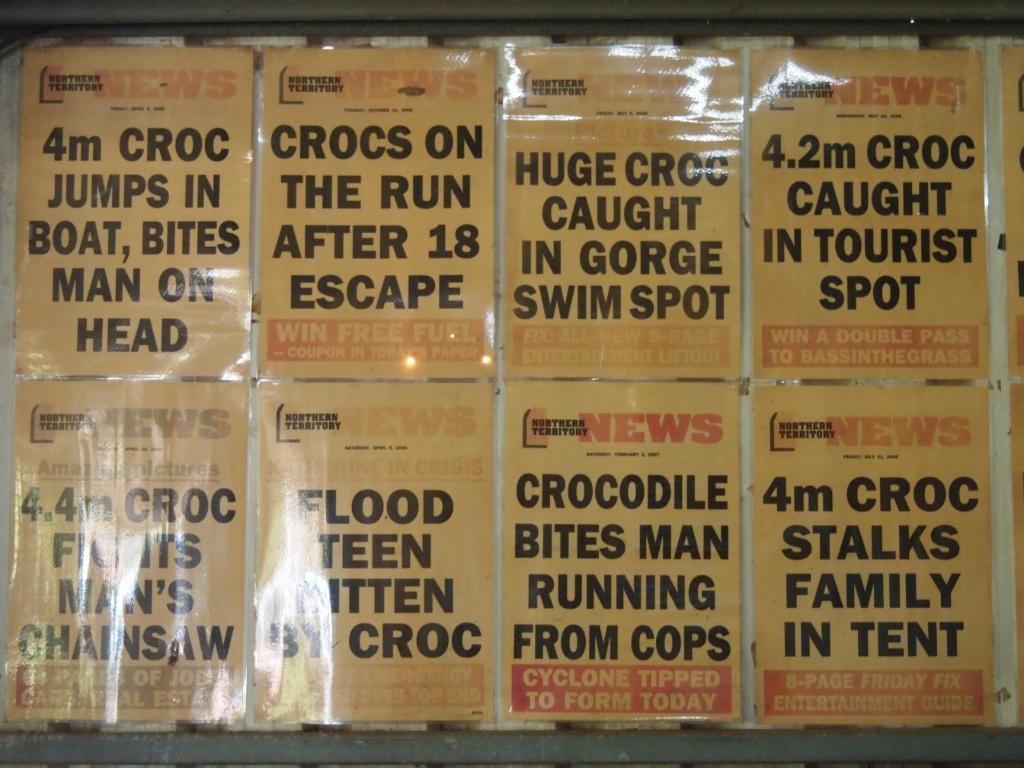 schlagzeilen-krokodil-australien