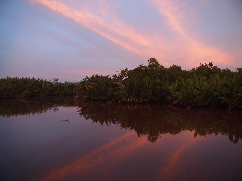Sonnenuntgang Kalimantan