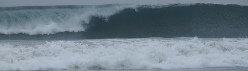 Welle Bali